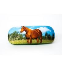 pouzdro kůň